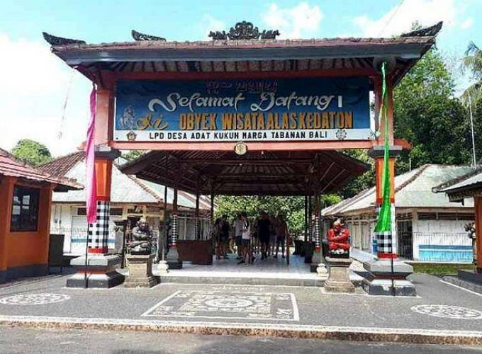 Bali Tour and Activities